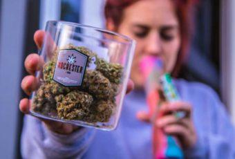 Top 20 des chiffres insolites sur le cannabis en France