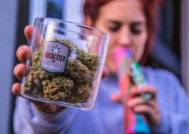 Top 20 des chiffres insolites sur le cannabis en France Lecture : 4 min