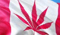 Canada: légalisation! Et maintenant?